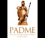 A második negyedévben a Pallas Athéné Alapítványok vagyona 429 millió forinttal gyarapodott, ezzel összvagyonuk 273,6 milliárd forintra nőtt